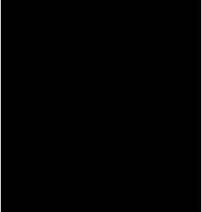 Vexcel Icon 02
